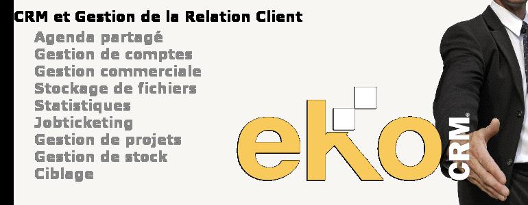 CGCOM Services - eKo CRM